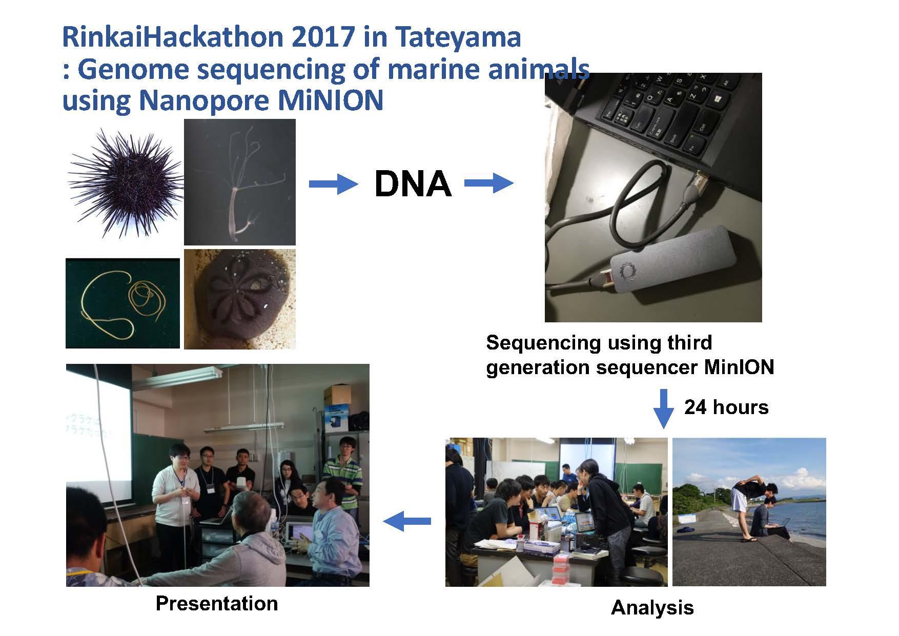 Rinkai Hackathon information page 4