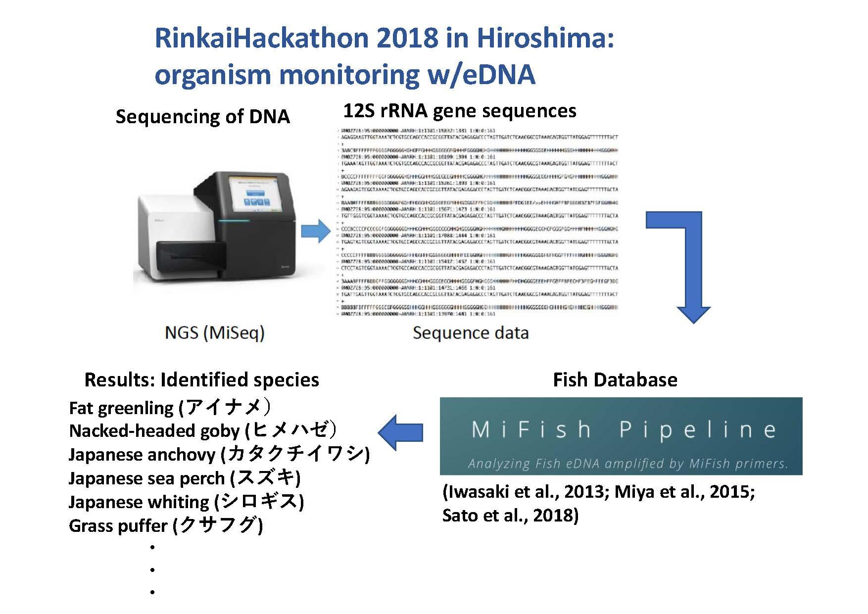 Rinkai Hackathon information page 8