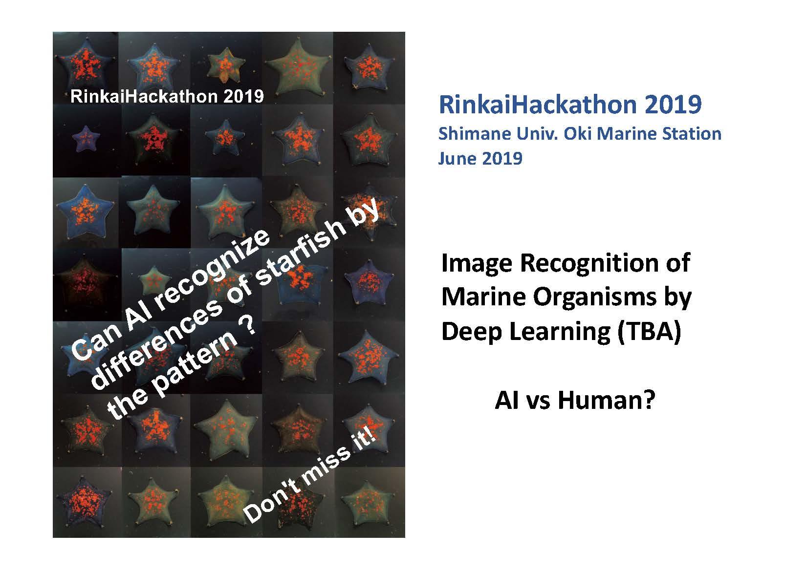 Rinkai Hackathon information page 9