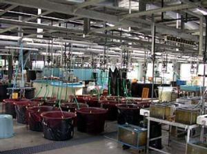 九州大学大学院生物資源環境科学府附属水産実験所 施設内部