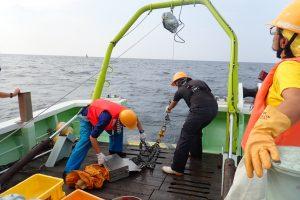 第21回 JAMBIO沿岸生物合同調査 2