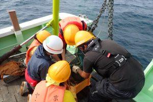第21回 JAMBIO沿岸生物合同調査 5